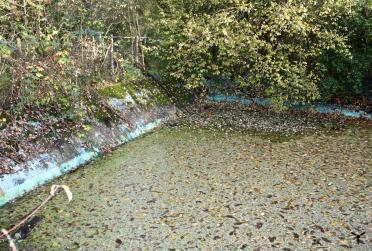 Löschwasserbecken