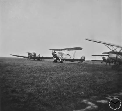 Focke Wulf FW 44